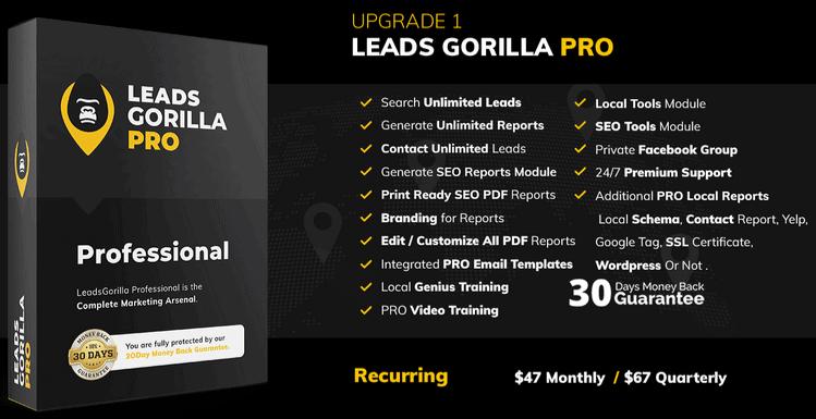 LeadsGorilla Review - Funnel (2)